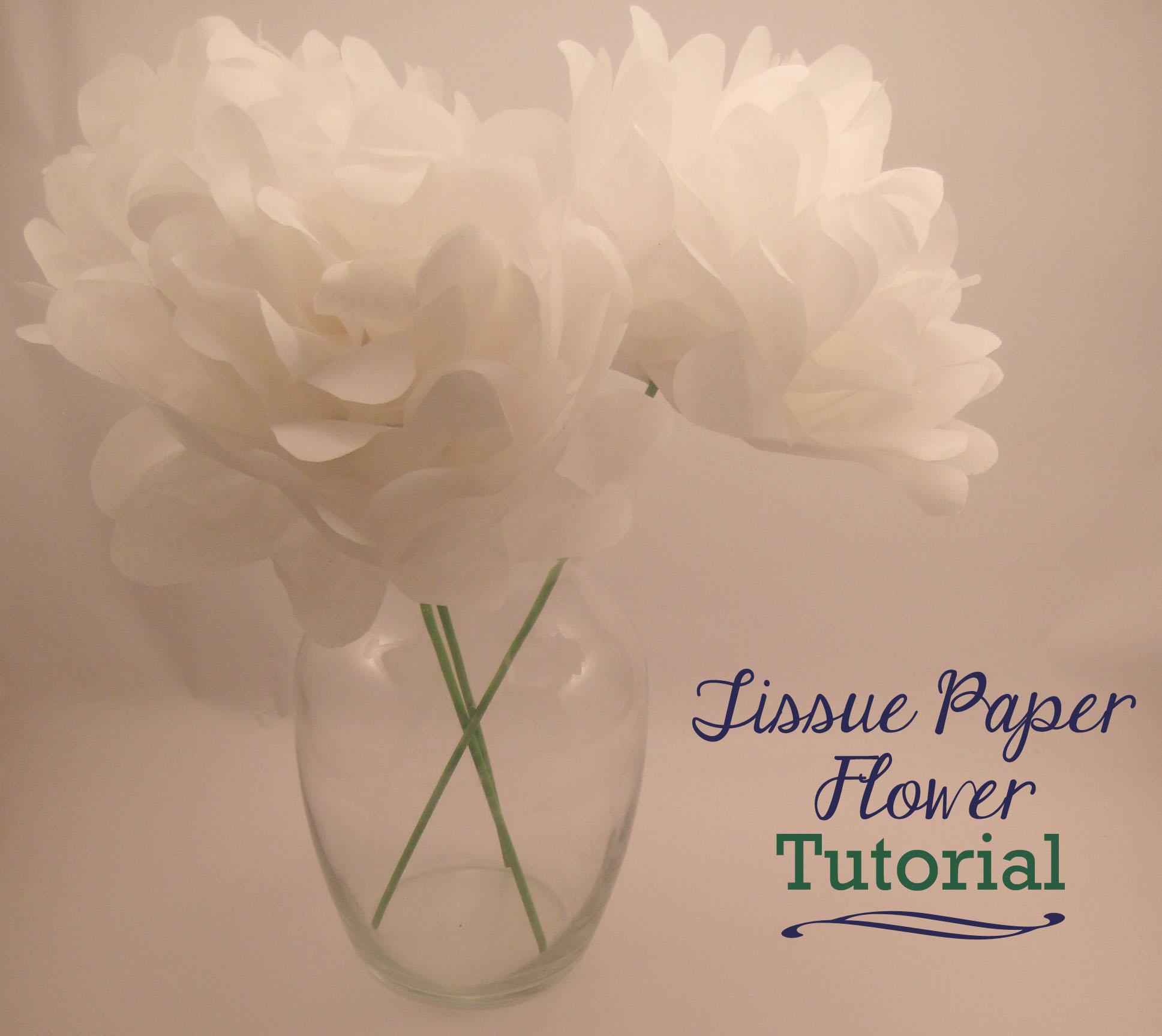 tissue paper flower instructions
