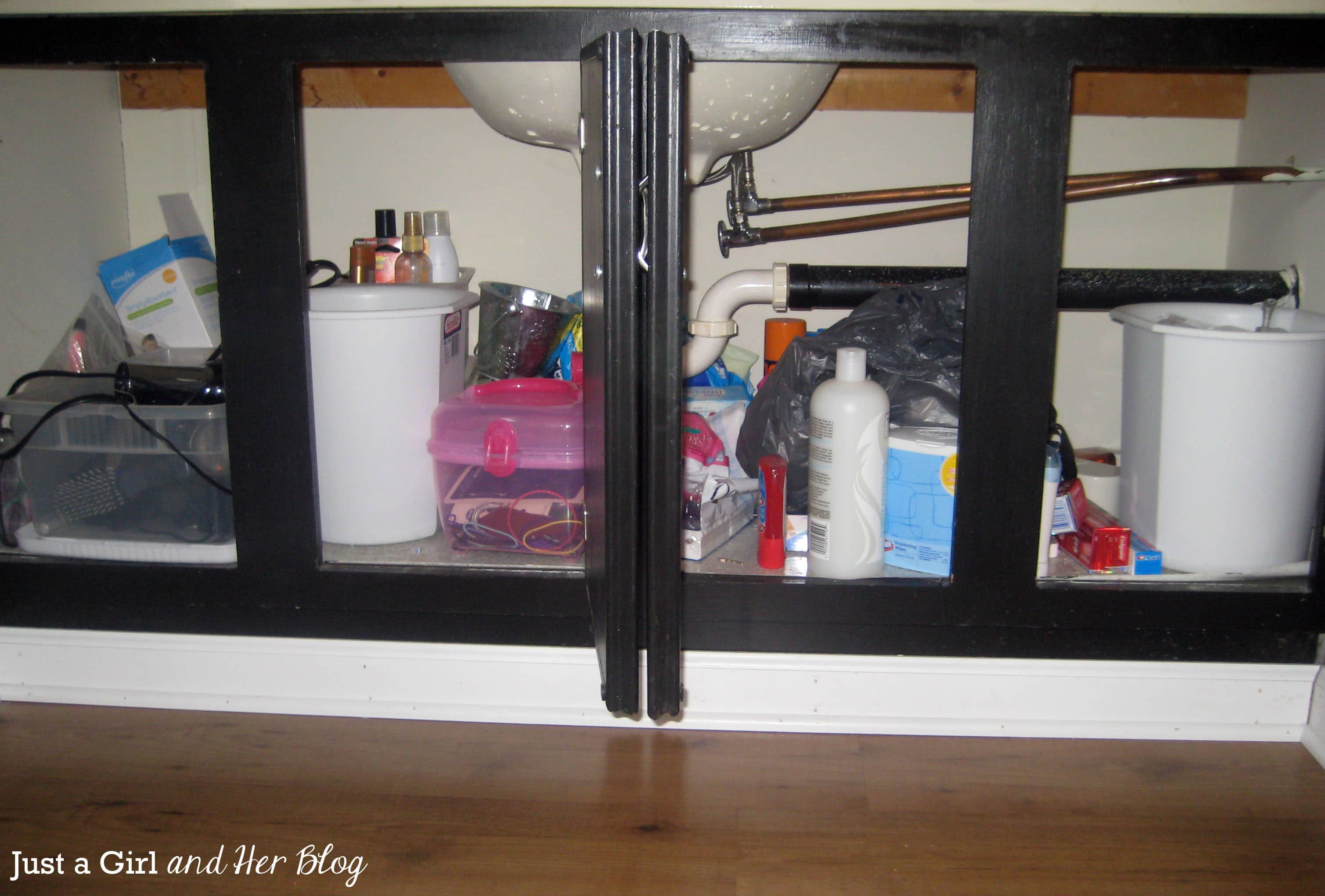 kitchen organizing organization under real mom sink the tips cabinet