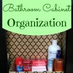 $0 Bathroom Cabinet Organization