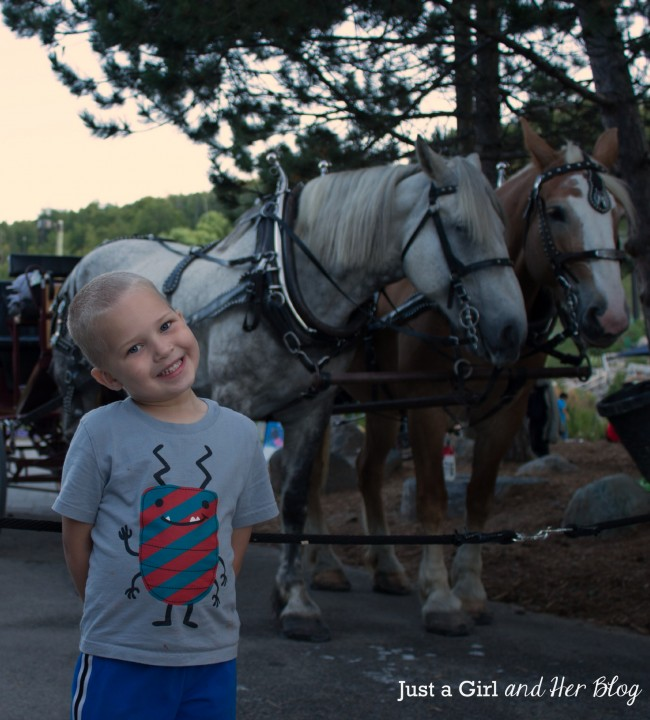 Connor with Horses, Just a Girl and Her Blog