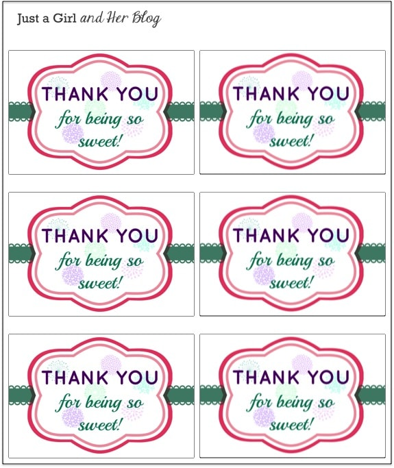 picture about Thank You Printable Tag titled A Lovable and Very simple Thank On your own Present with Totally free Printable