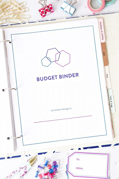 The 2017 Budget Binder