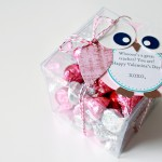 Owl Valentine Teacher Gift and a GIVEAWAY!