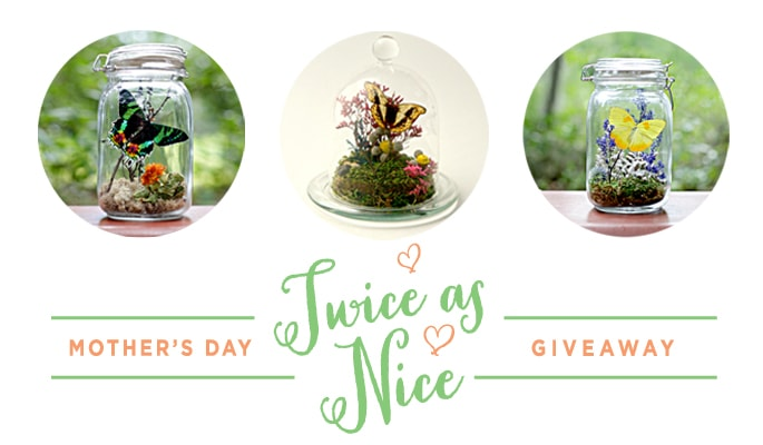 Twice as Nice Giveaway at justagirlandherblog.com and justaddconfetti.com