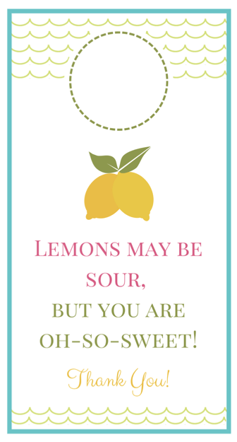 Lemonade Hostess Gift | Just a Girl and Her Blog for Mom 4 Real