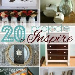 20 Pinspired Projects