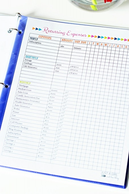 This free printable budget binder is super cute and has all of the pages you need to keep your spending habits in check! I'm going to save so much money this year! Click over to the post to snag the printables!