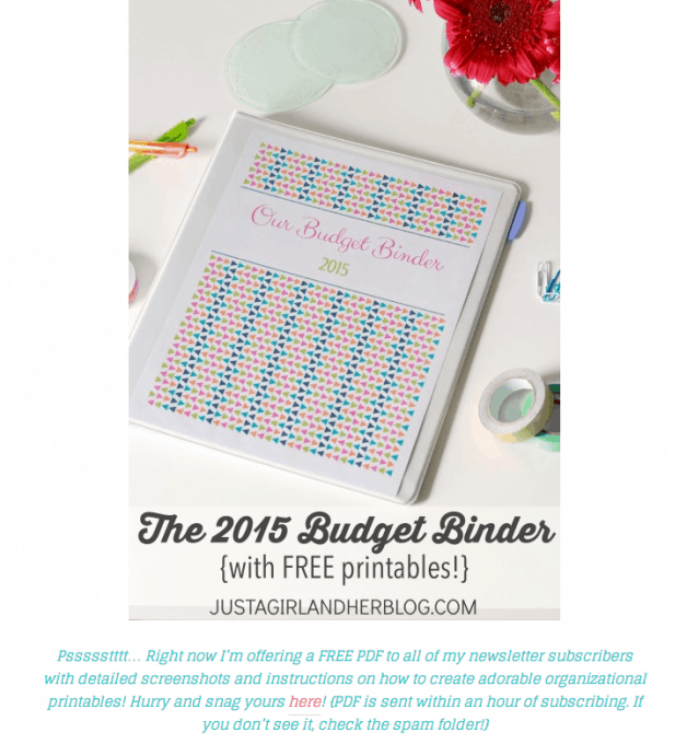 2015 budget binder email subscriber blurb
